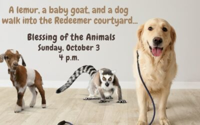 Blessing of the Animals on October 3